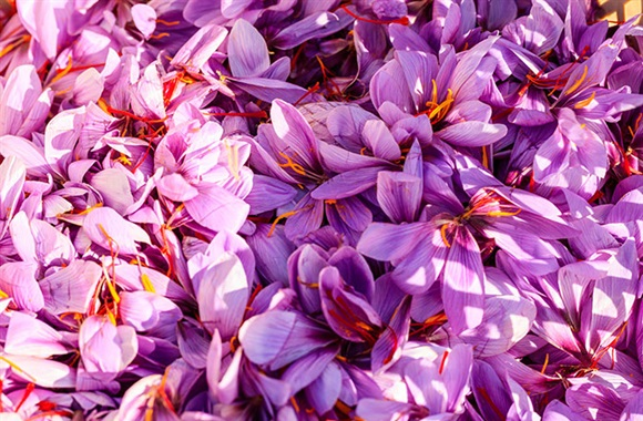 New study suggests saffron improves sleep