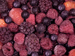 Four Berry Mix IQF 1kg SpeedBerry