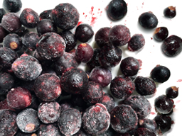 BLACK CURRANTS IQF 10KG