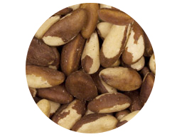Brazil Nuts Medium 20kg
