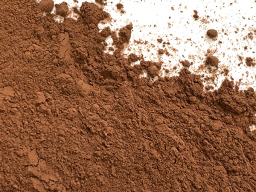Cocoa Powder Alkalised 10/12- Singapore 250DP11 25kg