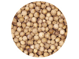 Coriander Whole Aust 25kg - SEE TIM