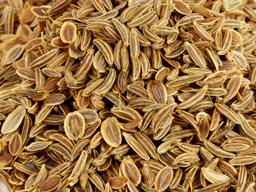 Dill Seed 25kg