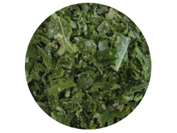 Mint Leaf IQF 6mm 10kg