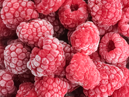 RASPBERRIES IQF 1KG SpeedyBerry