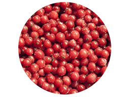 RED CURRANTS IQF 10KG